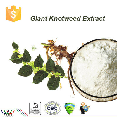 Extraction de Resveratrol de Knotweed de Japonais, extrait organique de racine de Cuspidatum de Polygonum